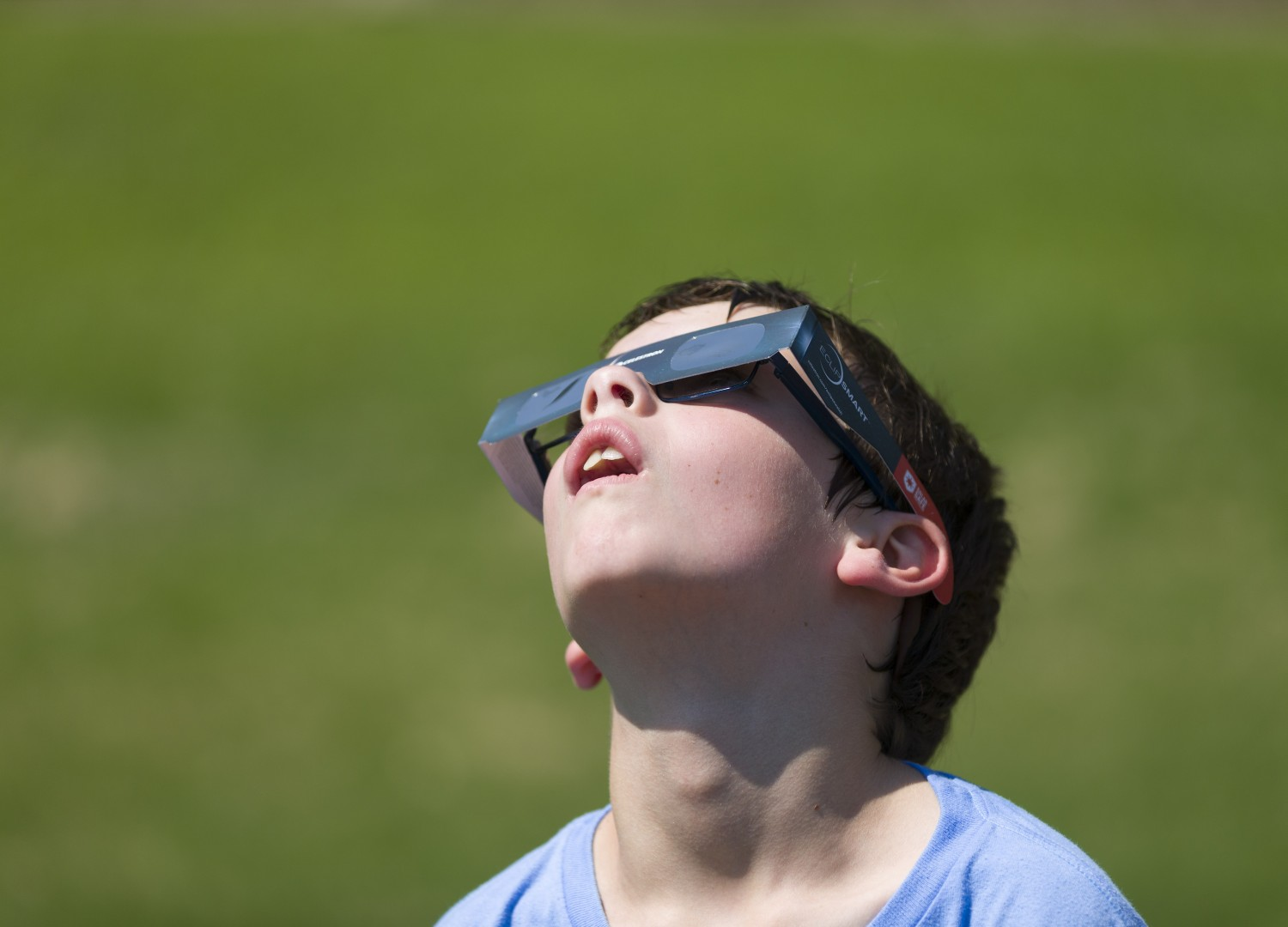 Many people donned their eclipse glasses at North Cary Park Aug. 21 to witness the solar eclipse.